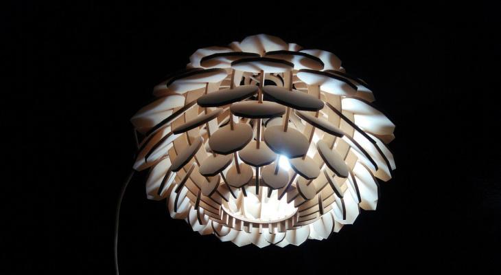 Житель Саранска при помощи самодельных станков создает деревянные люстры