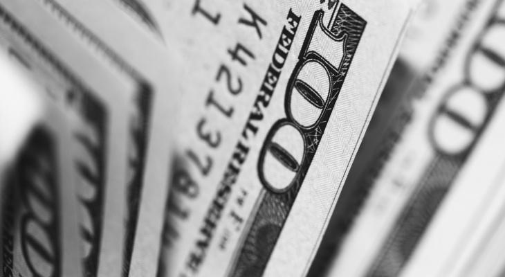 Житель Мордовии нашел на территории экопарка фальшивые сто долларов