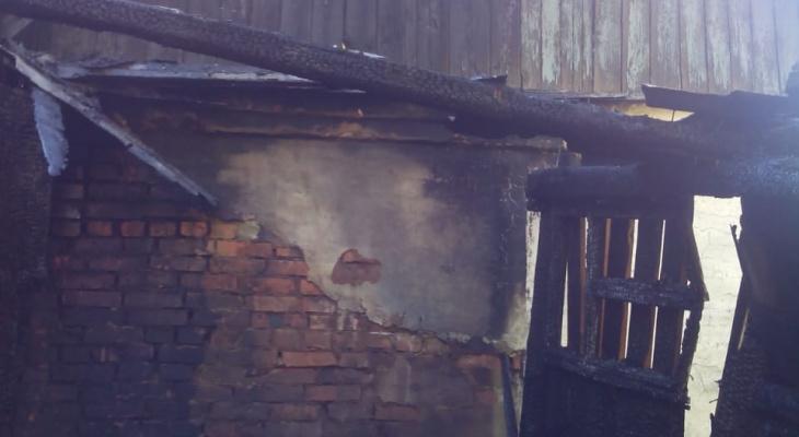 У жителя Мордовии загорелся дом из-за тополиного пуха: мужчина умер от сердечного приступа
