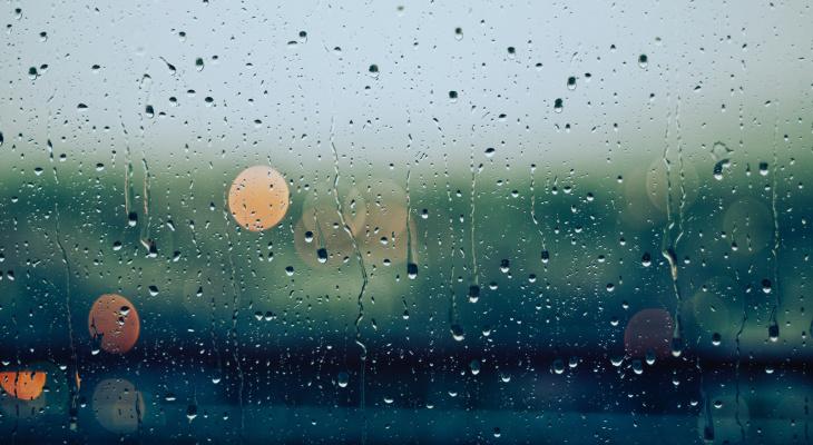 В начале недели в Мордовии ожидаются дожди