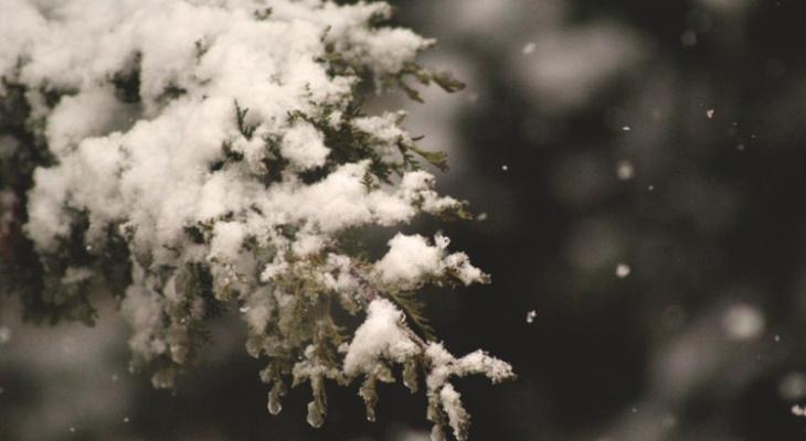 Синоптики пообещали россиянам погодные аномалии в декабре