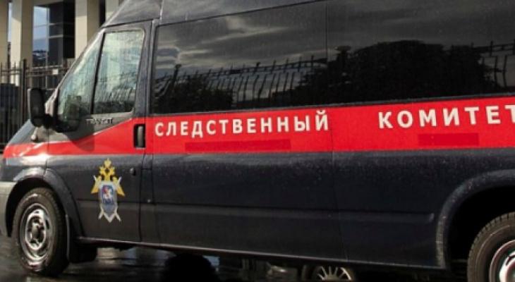Сотрудник птицефабрики в Мордовии погиб от травм на рабочем месте
