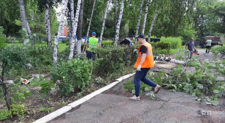 Коммунальщики работали всю ночь: в Саранске продолжают ликвидировать последствия бури