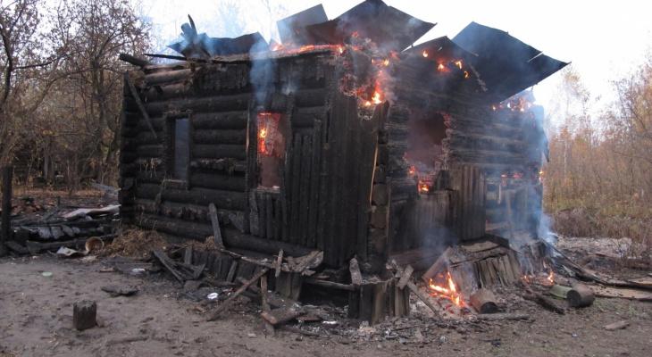 Пьяный житель Мордовии убил пенсионерку, а потом попытался сжечь тело вместе с домом