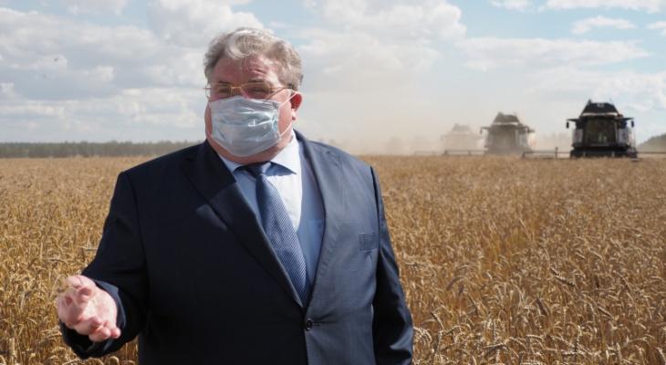 Глава Мордовии: «В этом году мы планируем собрать рекордный урожай – до 2 миллионов тонн зерна»