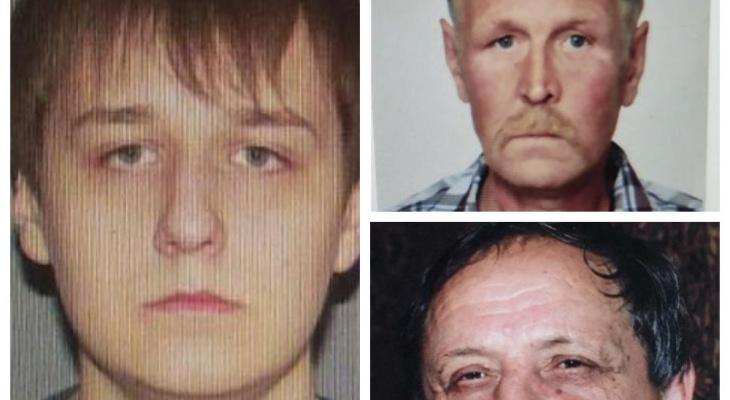 В Мордовии ищут троих пропавших без вести мужчин