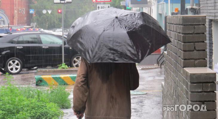 Готовим зонтики: синоптики рассказали о погоде в Саранске на 18 октября
