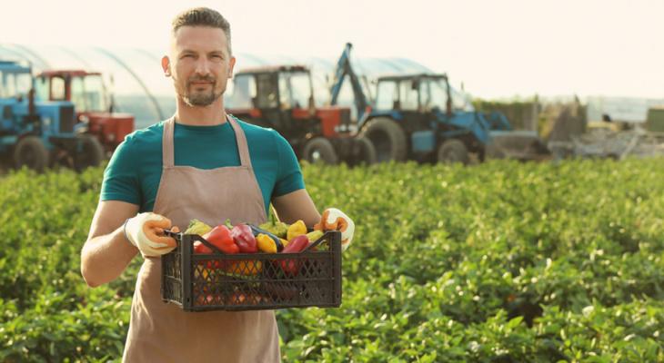 Россельхозбанк назвал самые перспективные продуктовые категории для развития фермерства