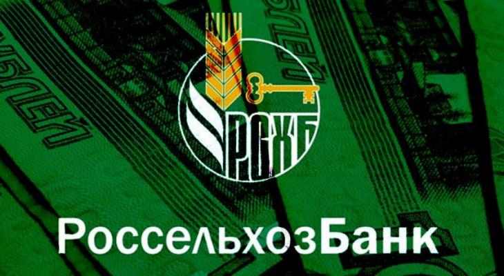 Россельхозбанк занимает более трети рынка Мордовии по обмену валют среди населения