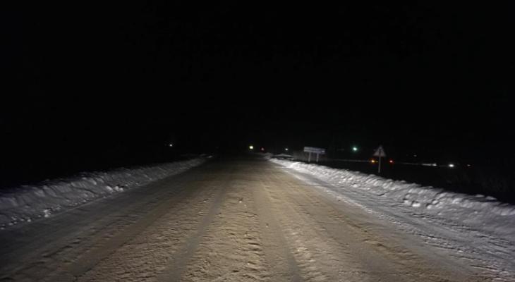 В Мордовии иномарка вылетела в кювет: пострадали двое