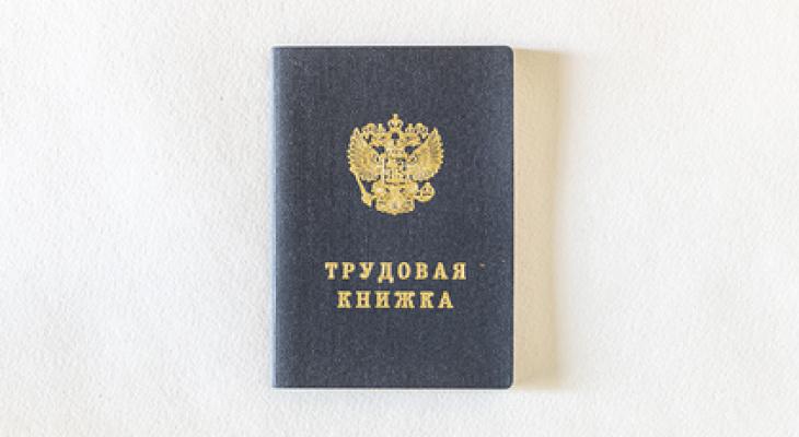 В России появятся трудовые книжки нового образца