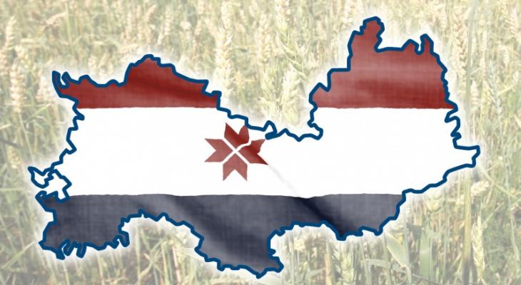 Рузаевский район: жители выбирают территории для благоустройства в 2022 году