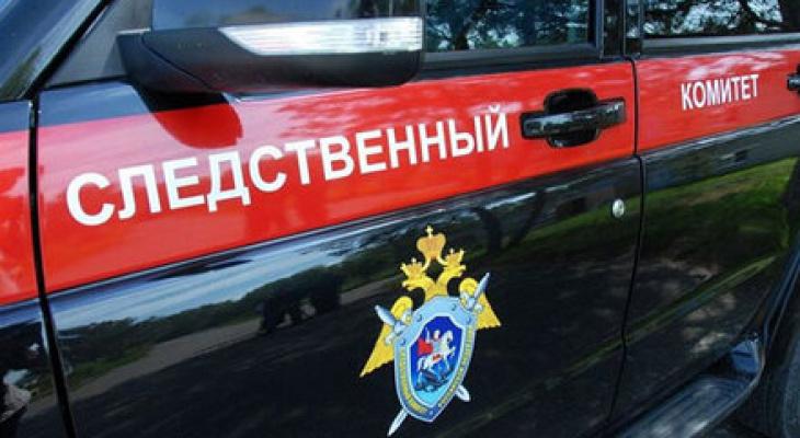 В Саранске ищут очевидцев ДТП на пешеходном переходе, в котором погиб мужчина
