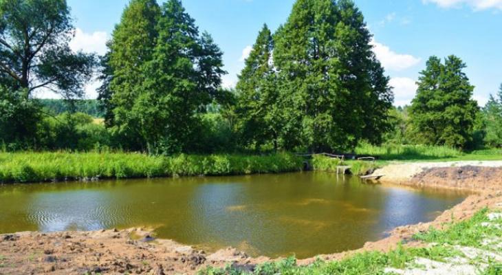 В Мордовии в искусственном пруду утонул 12-летний школьник