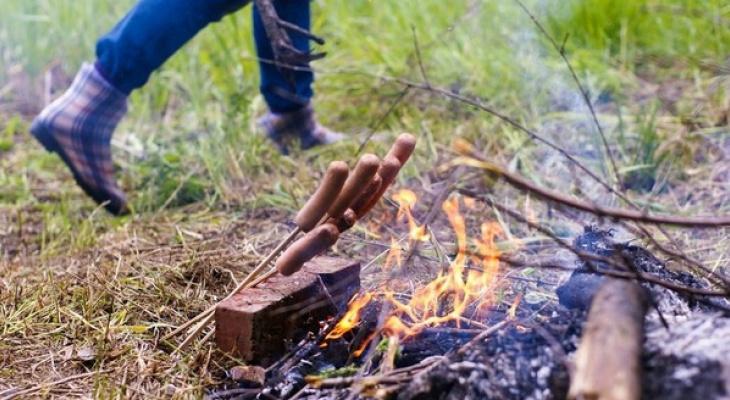 На территории Мордовии ожидаются 4 и 5 классы пожарной опасности