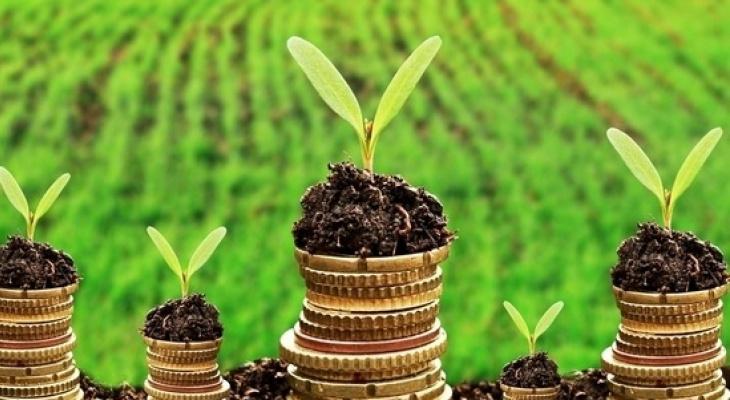 Разберем по составу: Россельхозбанк начнет предоставлять цифровой сервис анализа почвы на макоро- и микроэлементы, чтобы повысить урожайность полей