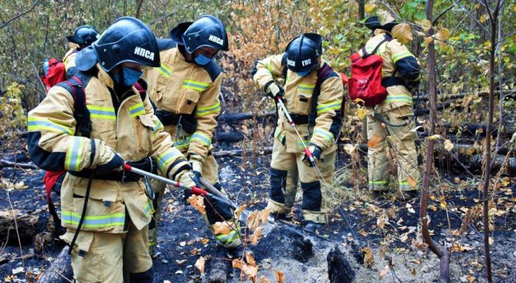 За сутки в мордовском заповеднике площадь активного горения уменьшилась на 3 га