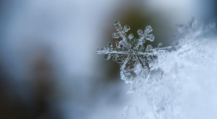Климатолог рассказал, будет ли предстоящая зима морозной