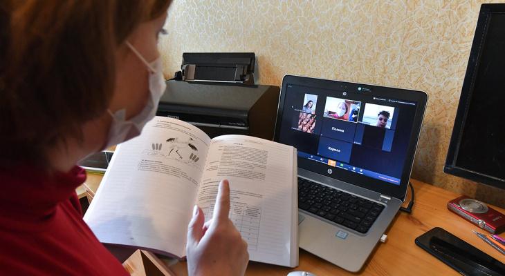 На дистанционное обучение перевели 11 школ Мордовии