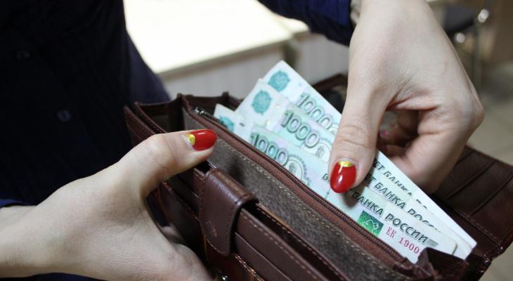 Более четверти жителей Мордовии готовы работать за зарплату в размере от 12 до 20 тысяч рублей