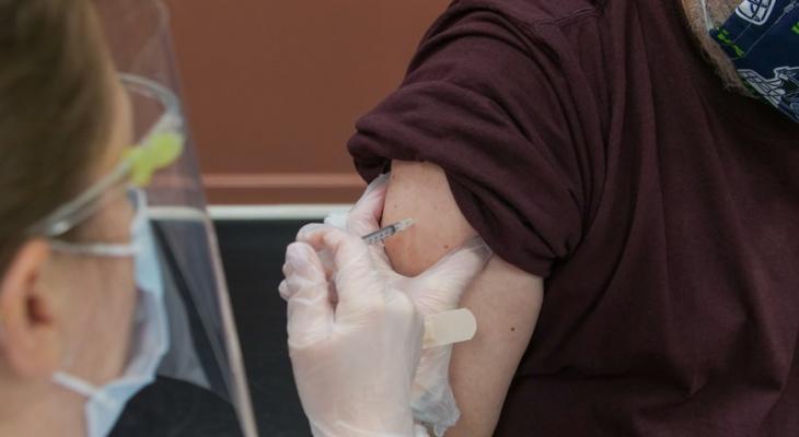 Обязательная вакцинация в Мордовии: кому необходимо сделать прививку от коронавируса?